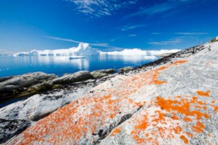 Ghiacciai_Groenlandia_trasportano_mercurio.jpg
