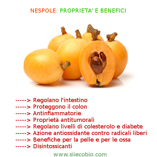 Nespole_proprieta_benefici.jpg